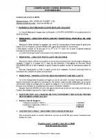 Conseil municipal du 19 02 2013